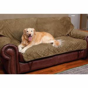 camas originales para perros