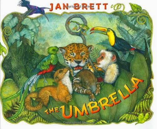 The Umbrella, part of book review list of jungle and rainforest books