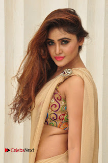Actress Sony Charishta Pictures in Saree at Aura Fashion Exhibition Launch  0088