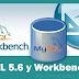 Cómo Descargar e Instalar MySQL 5.6 y Workbench 6.3