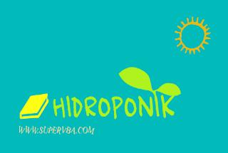 Pembelajaran menanam tanaman Hidroponik