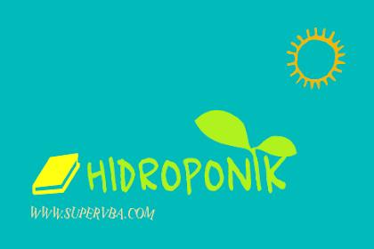 Pembelajaran menanam tanaman Hidroponik Kepada Siswa Sekolah