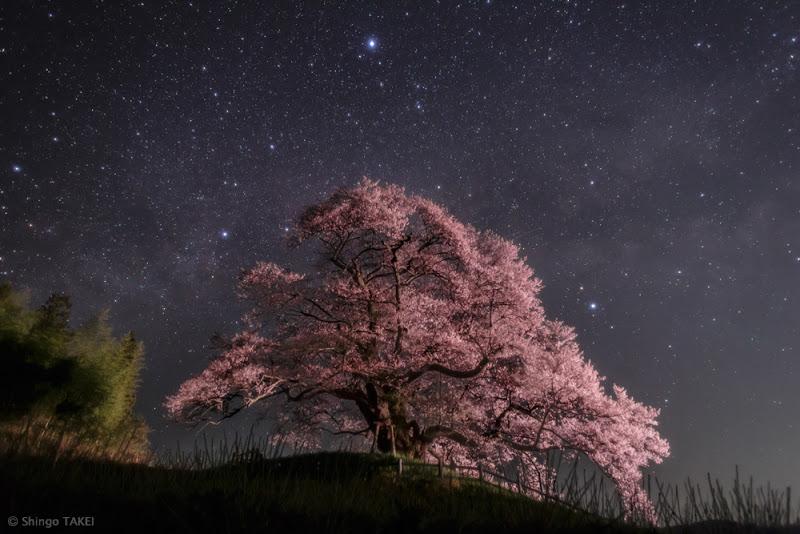 Pha Trăng mới là thời điểm lý tưởng để quan sát bầu trời đêm khi không có sự xuất hiện của ánh sáng trăng quấy rối. Hãy thưởng thức vẻ đẹp của bầu trời đêm mùa xuân với những thiên thể đáng chú ý. Hình ảnh: Shingo Takei (TWAN).