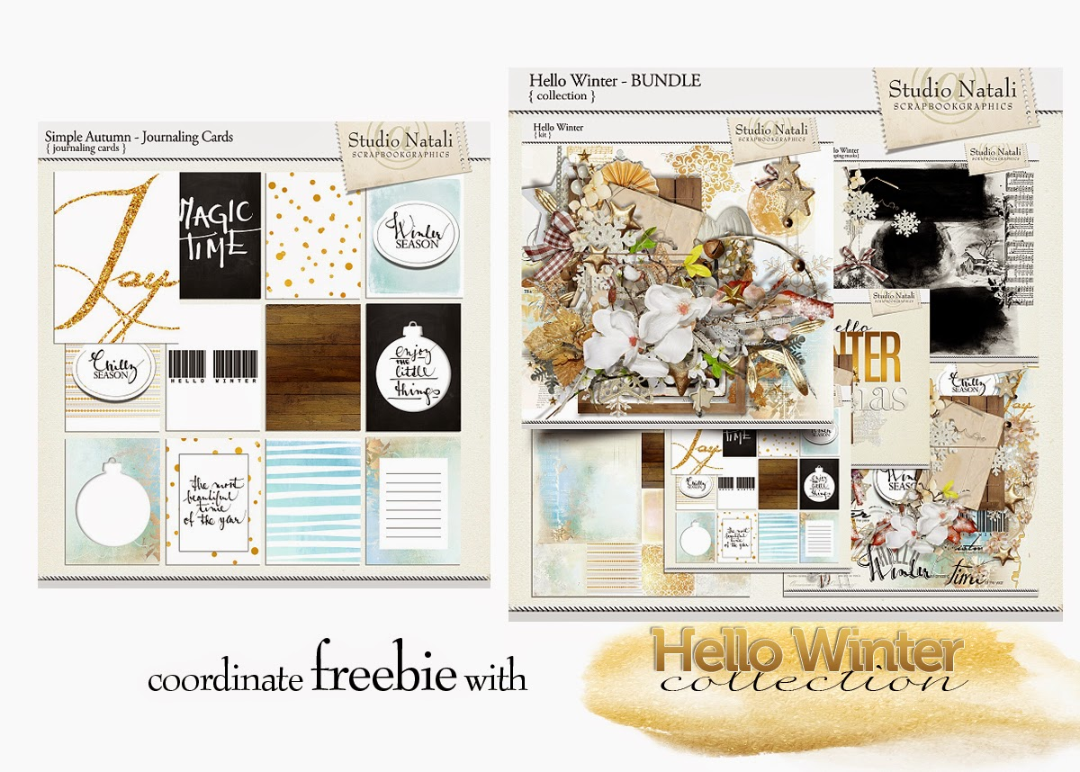 http://natalidesign.blogspot.cz/2014/11/hello-winter-coupon-calendar-for-two.html