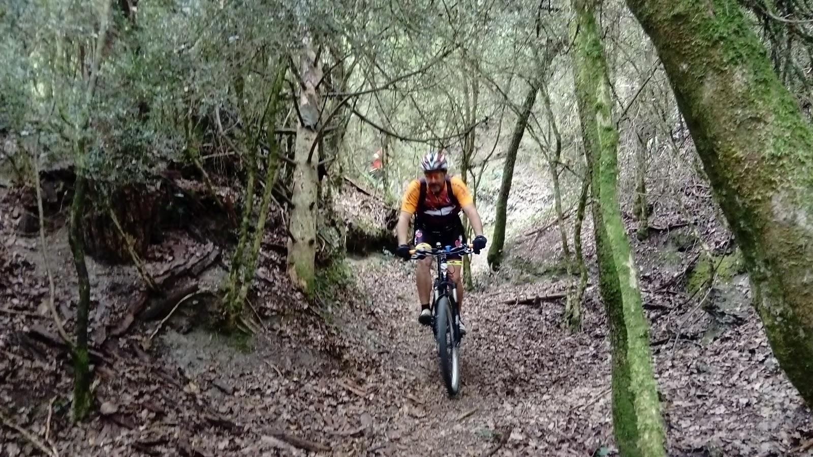 Osona rutes centelles taradell for Piscines centelles