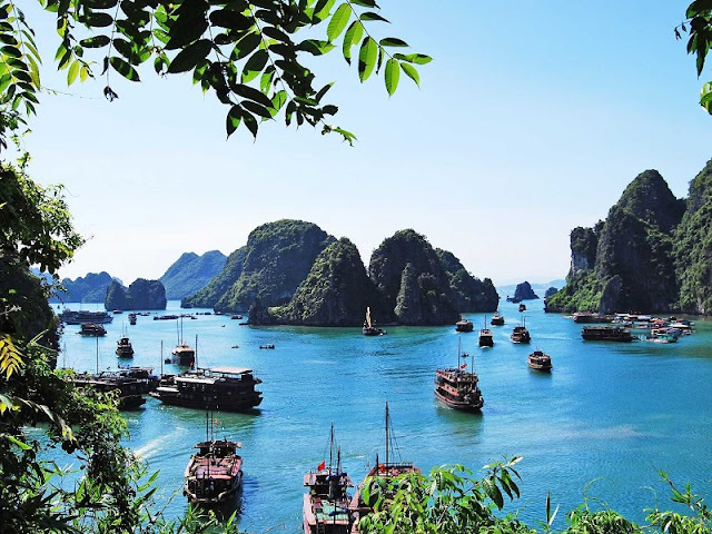 Foreign visitors attracted by luxurious travel in Vietnam 1