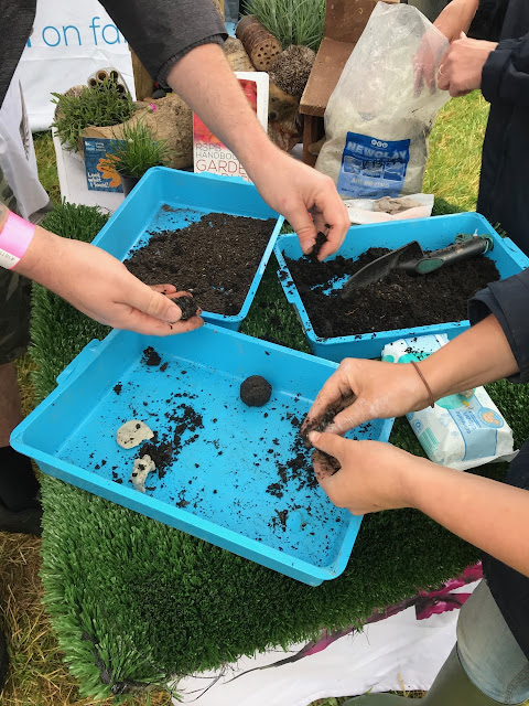 A tray, soil and hands making seed bombs