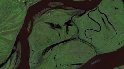 Faces found in nature, picture of green lands from above