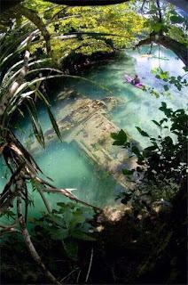 Bangkai pesawat perang Jepun semasa Perang Dunia ke-2 kelihatan tenggelam di dasar tasik di Guam.