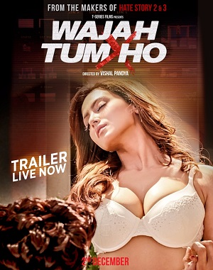 Wajah Tum Ho 2016 DVDRip