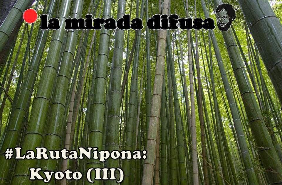 LA RUTA NIPONA: KYOTO (III) - CAQUIS CAÍDOS Y BAMBÚ