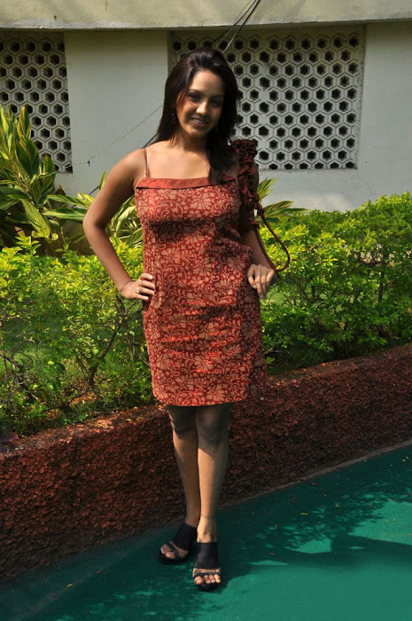 pavani reddy new , pavani latest photos