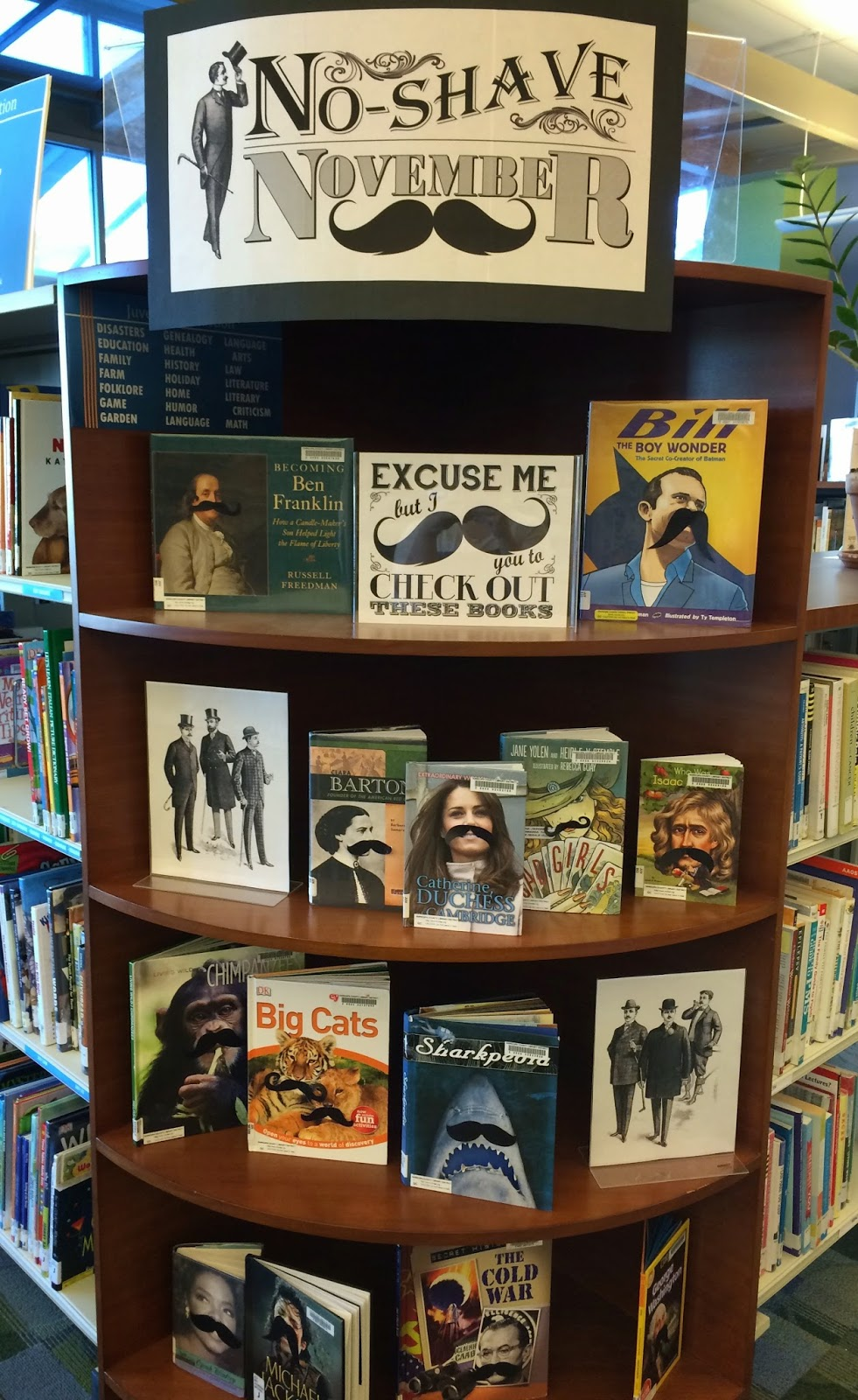 Literary Hoots: Library Display: No