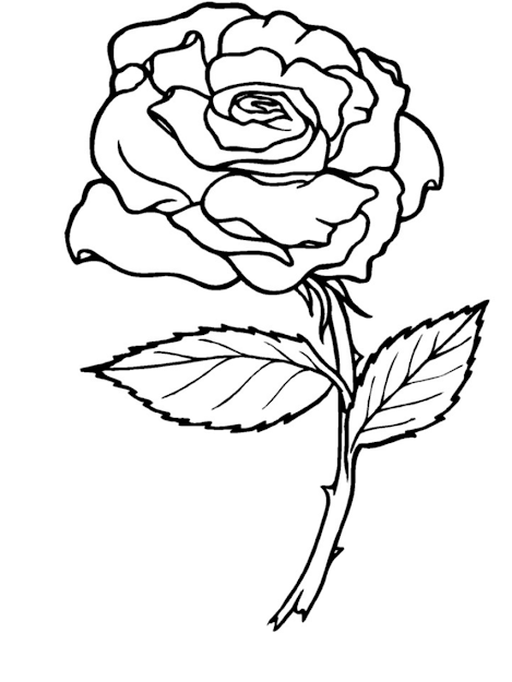 Rose Coloring Pages  Rose Coloring Pages  Within Roses Coloring Pages