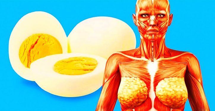 6 Things That Will Happen In Your Body If You Start Eating 2 Eggs A Day