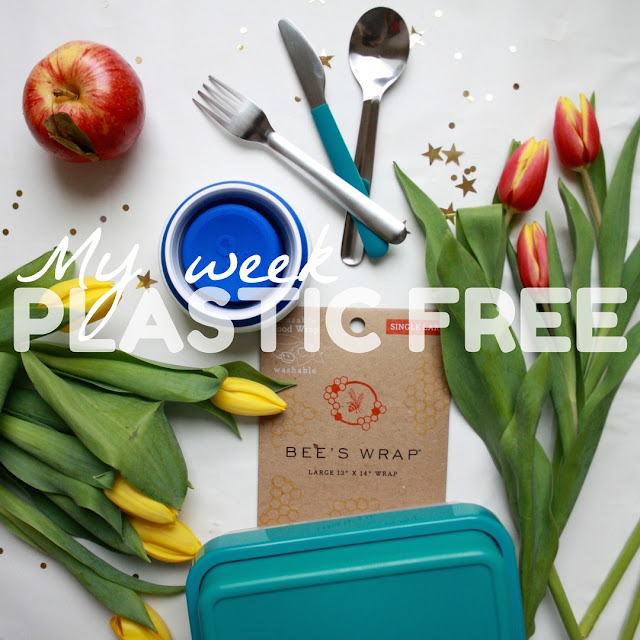 plastic free reduce eco friendly