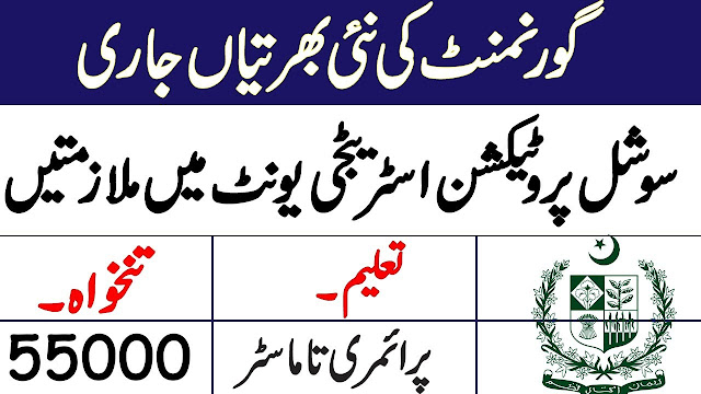 SPSU Jobs 2020 Advertisement, Social Protection Strategy Unit