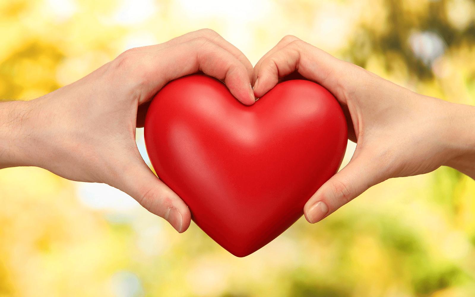 Rood liefdes hartje en twee handen