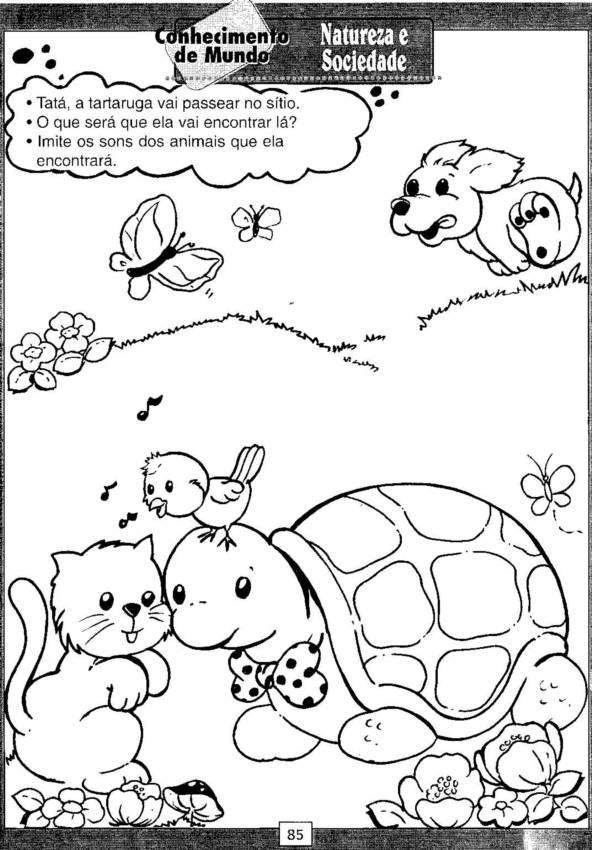 Atividades Natureza E Sociedade Atividades Pedagógicas