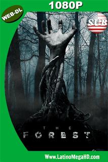 El Bosque De Los Suicidios (2016) Subtitulado HD WEB-DL 1080P - 2016