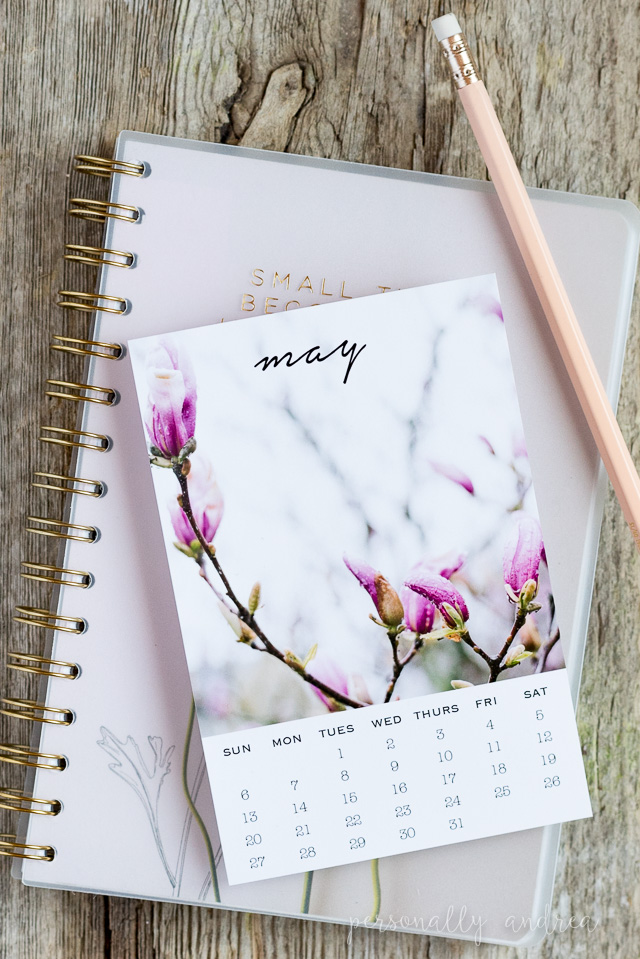 May Printable Calendar Postcard | personallyandrea.com