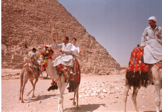 mısır piramit deve