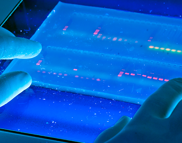 Your chance in Biotechnology is waiting for you