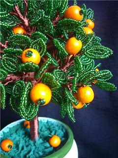 дерево апельсин