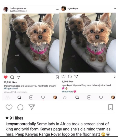 """What you don't know about oge okoye's alleged """"dog thievery"""""""