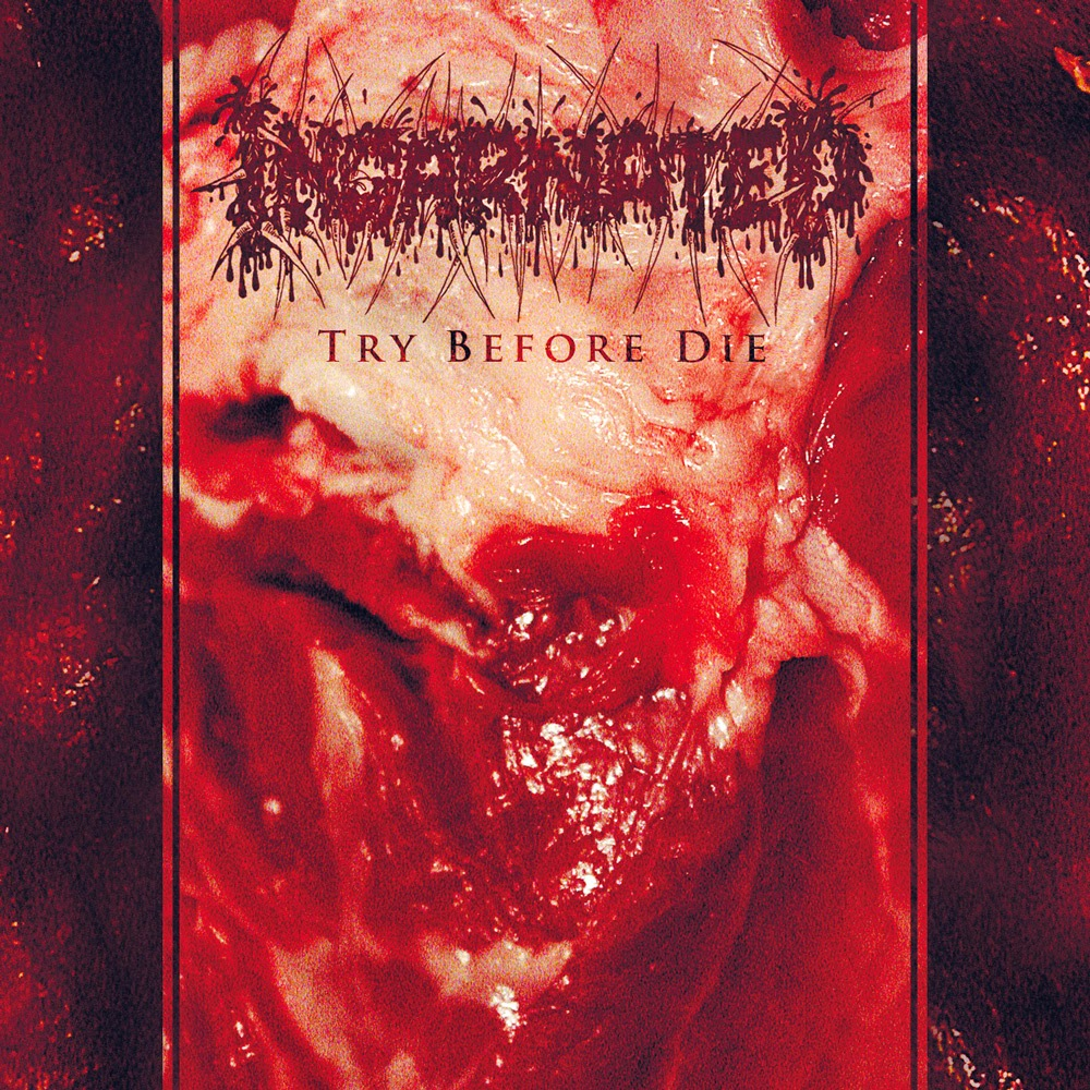 Incarnated - Try Before Die - album - cover