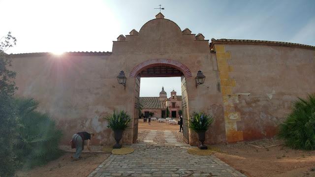 decoración de bodas y eventos en Sevilla