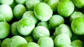 Kacang Polong