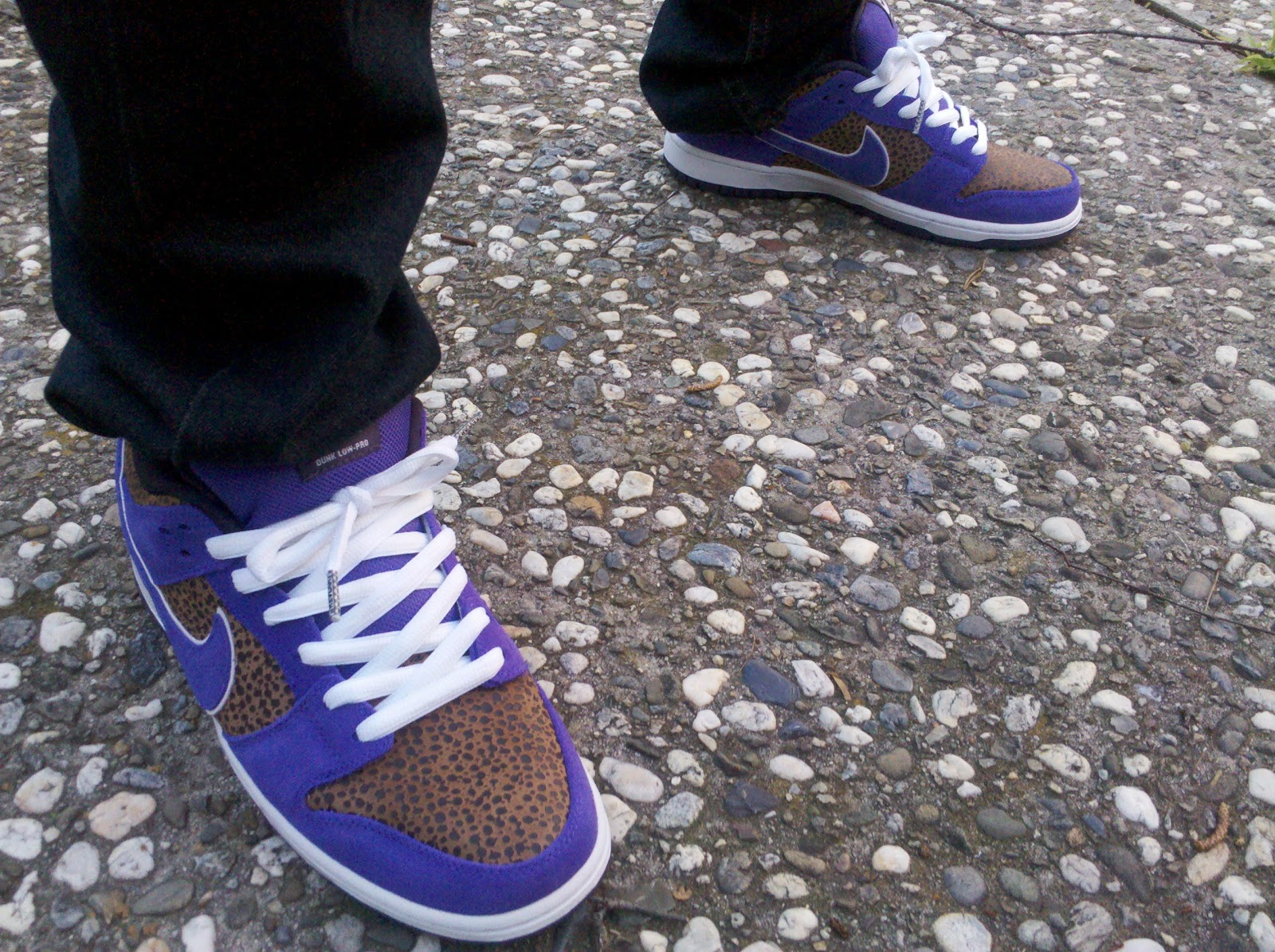 8976d13aaa7 KickItFresh Sneaker Photo Blog  SNEAKER REVIEW - DUNK LOW SB