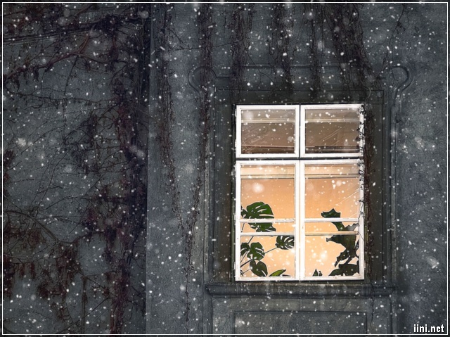 tuyết rơi đêm mùa đông