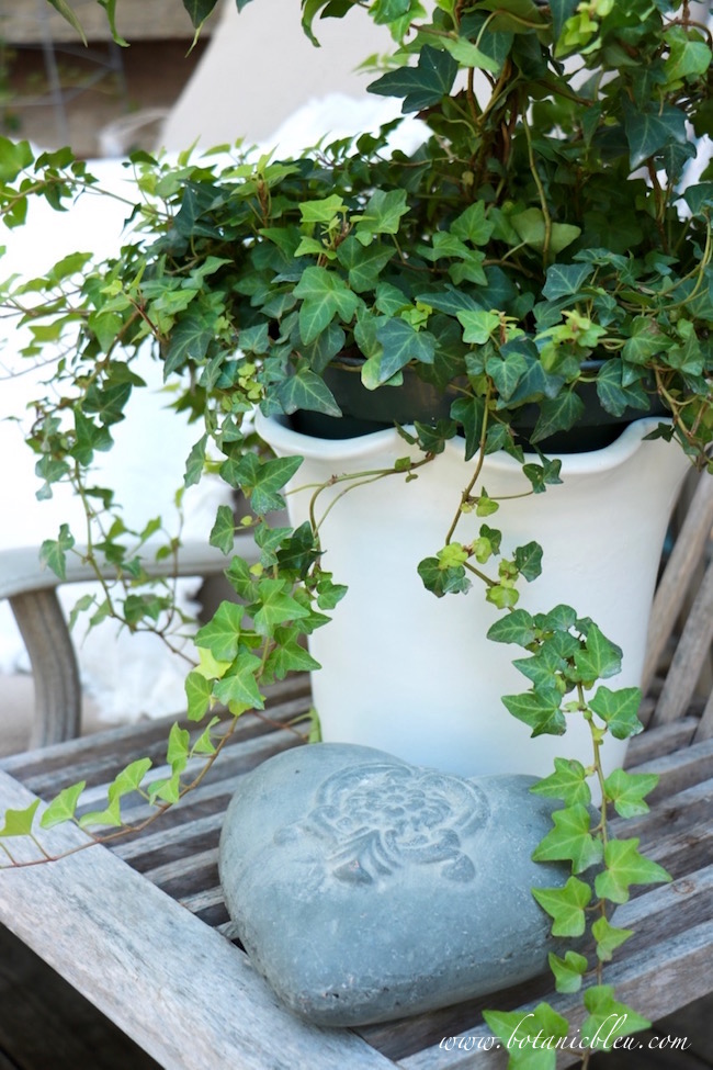 french-design-white-ceramic-pot-ivy-spiral-topiary