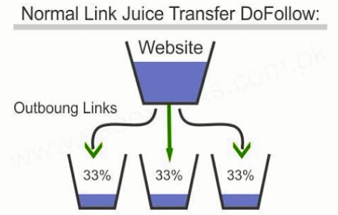 What Is The Meaning Link Juice
