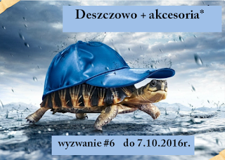 http://hubka38.blogspot.com/2016/09/wyzwanie-6-d.html