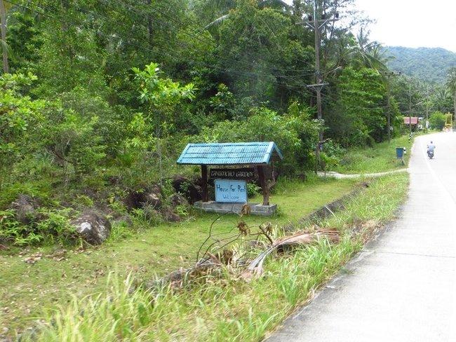 Дома в аренду на Пангане
