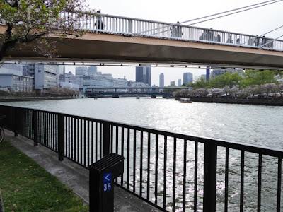 桜之宮公園 大川と川崎橋と天満橋