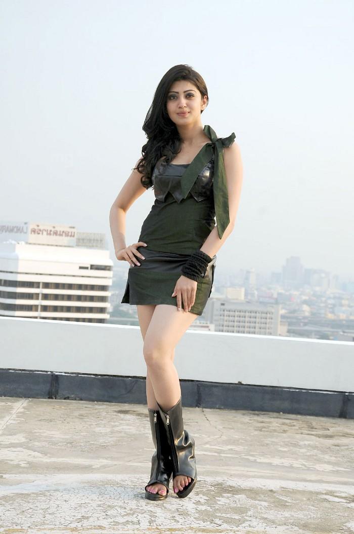 bollywood entertainment      udhayan movie heroine pranitha hot stills  photo  gallery