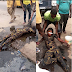 Lady Faints And Falls Inside A Gutter After Being Punched By Keke Rider In Lagos (Photos)