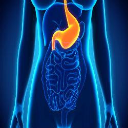 Gastroparesia: um distúrbio do estômago misterioso