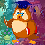 Games4king Master Owl Escape Walkthrough