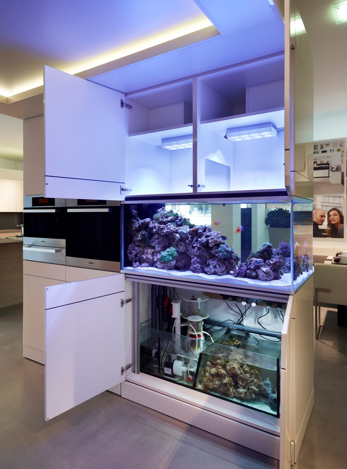 kitchen island aquarium