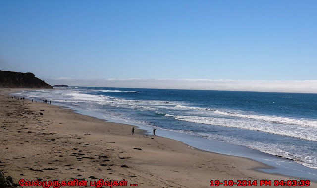 Waddell Creek Beach in Davenport  California