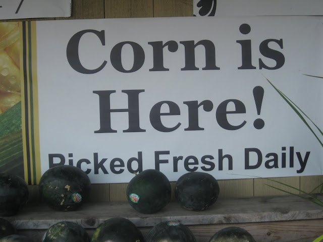 sign: corn is here