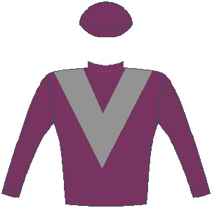 MAMBO MIME - Horse - South Africa - Maroon, grey chevron, maroon sleeves and cap