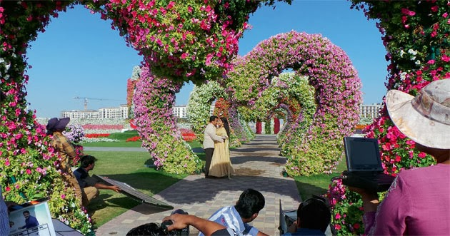 Latest Hd Wallpaper Dubai Miracle Garden Latest Hd Wallpapers