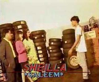 Download Lagu Malaysia Saleem Iklim Sheilla Mp3