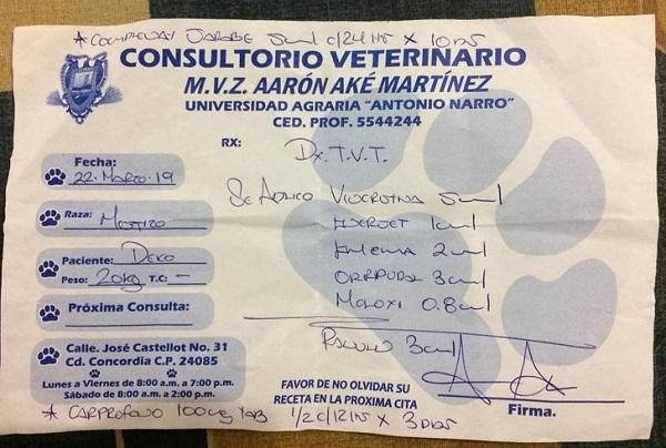 Prescrição veterinária de Deko (Imagem: Reprodução/©Vanessa Euán/Facebook)